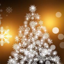 Weihnachtsdärme